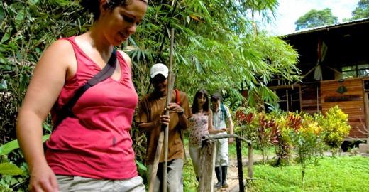 Beginning the rainforest tour
